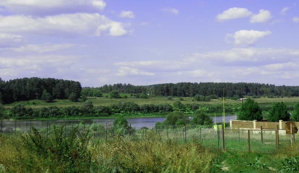 База отдыха «Березовая роща» Тульская область, фото 6