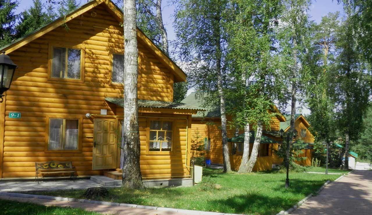 База отдыха «Березовая роща» Тульская область, фото 1