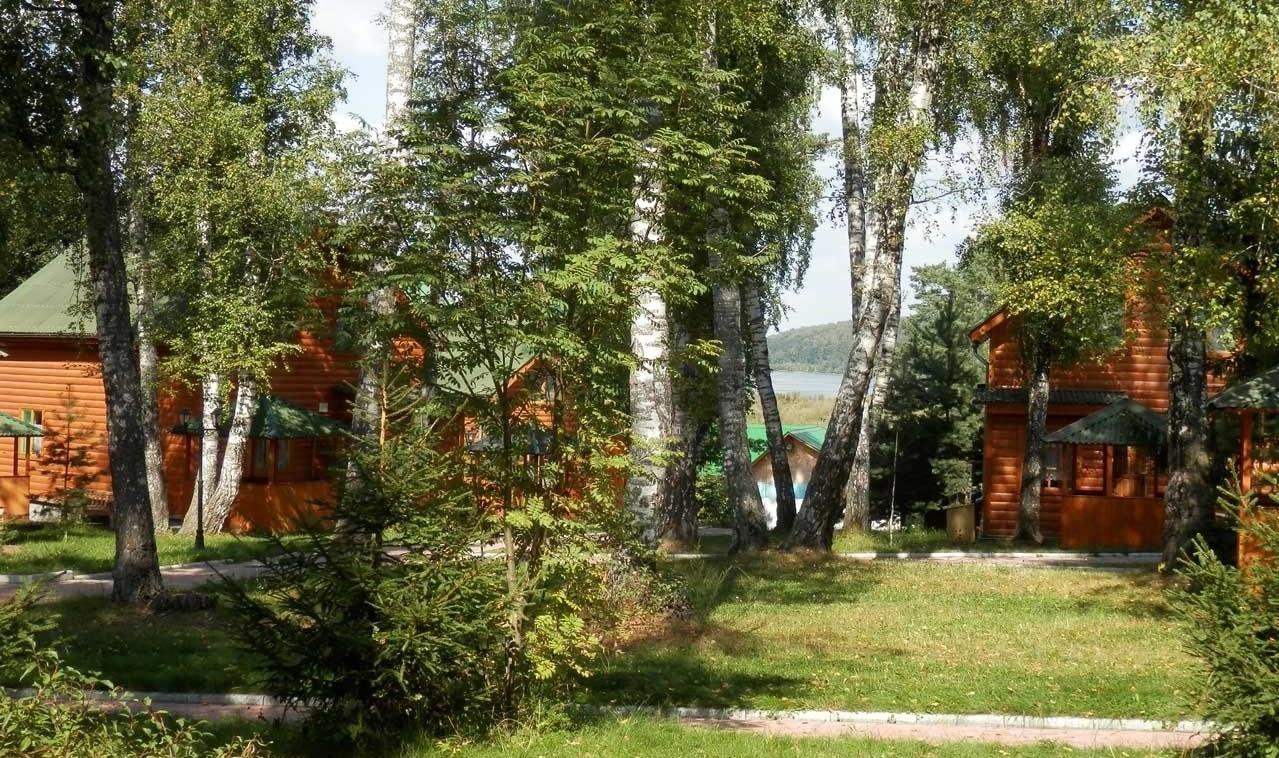 База отдыха «Березовая роща» Тульская область, фото 2