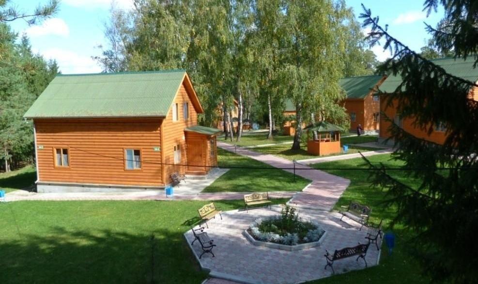База отдыха «Березовая роща» Тульская область, фото 4