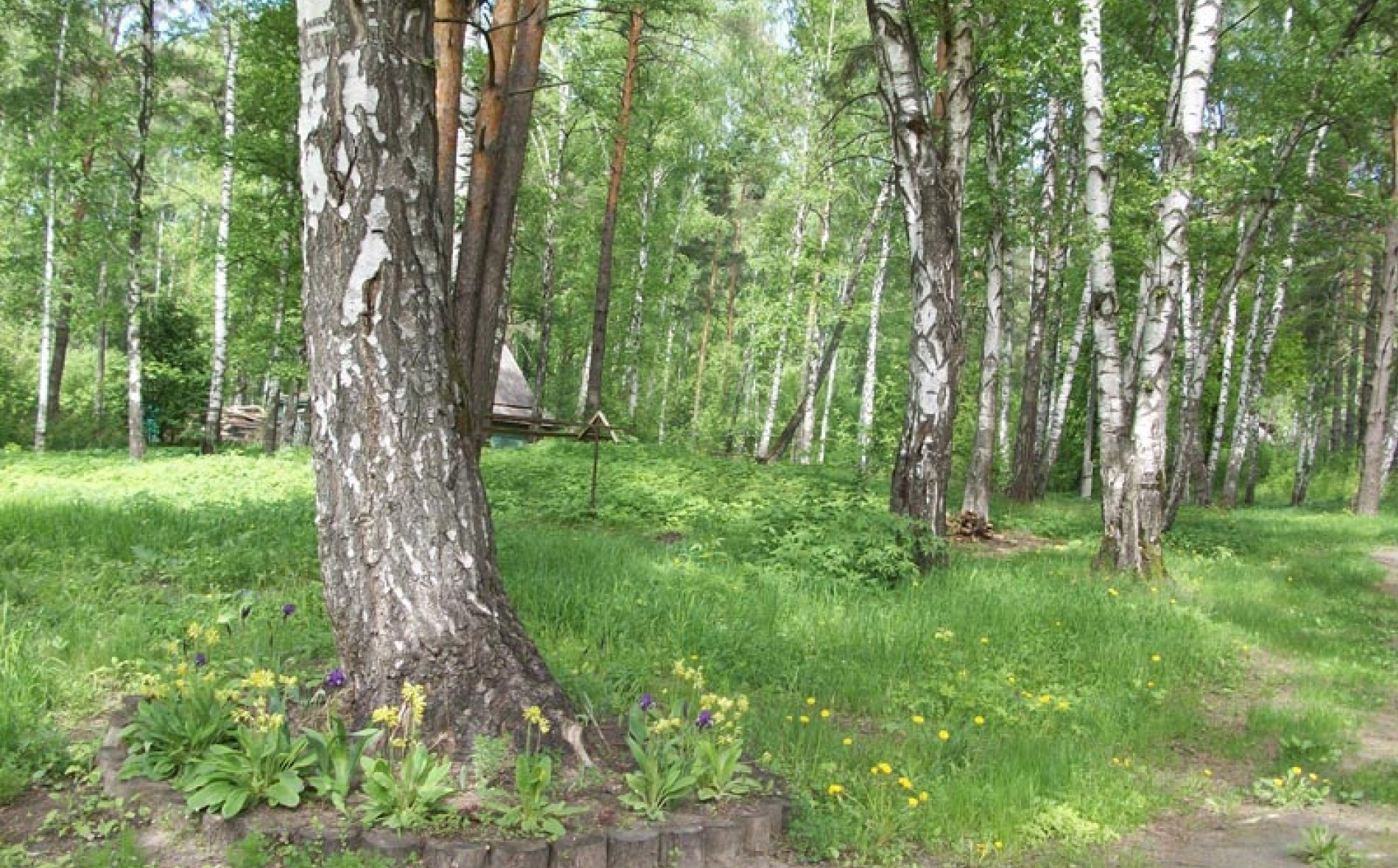 База отдыха «Лебяжье» Республика Татарстан, фото 11