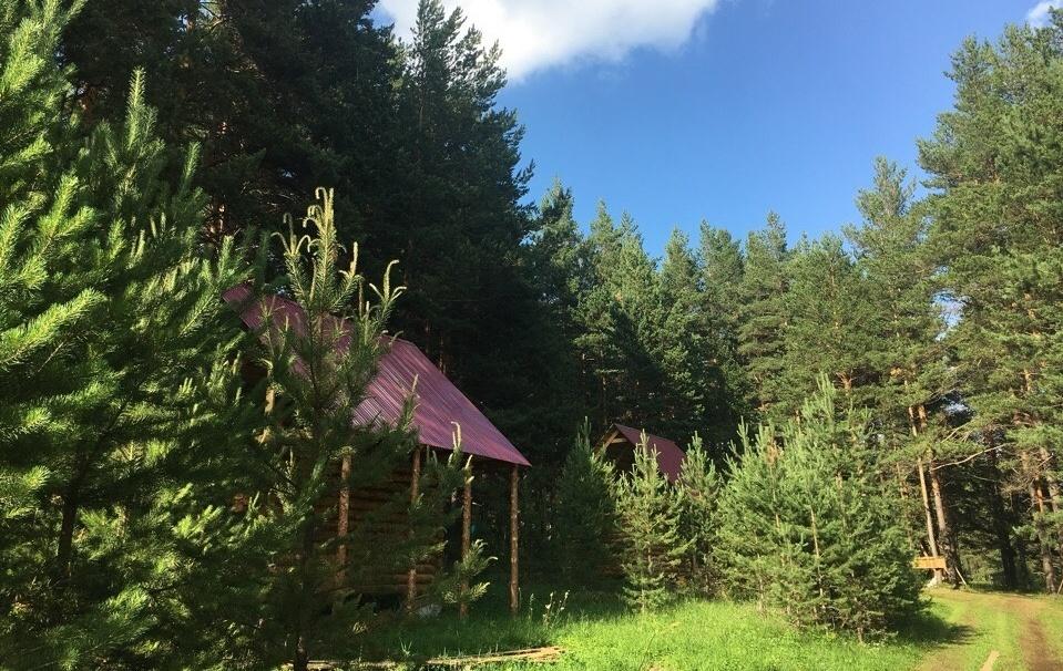 База отдыха «Зеленый мыс» Республика Башкортостан, фото 12