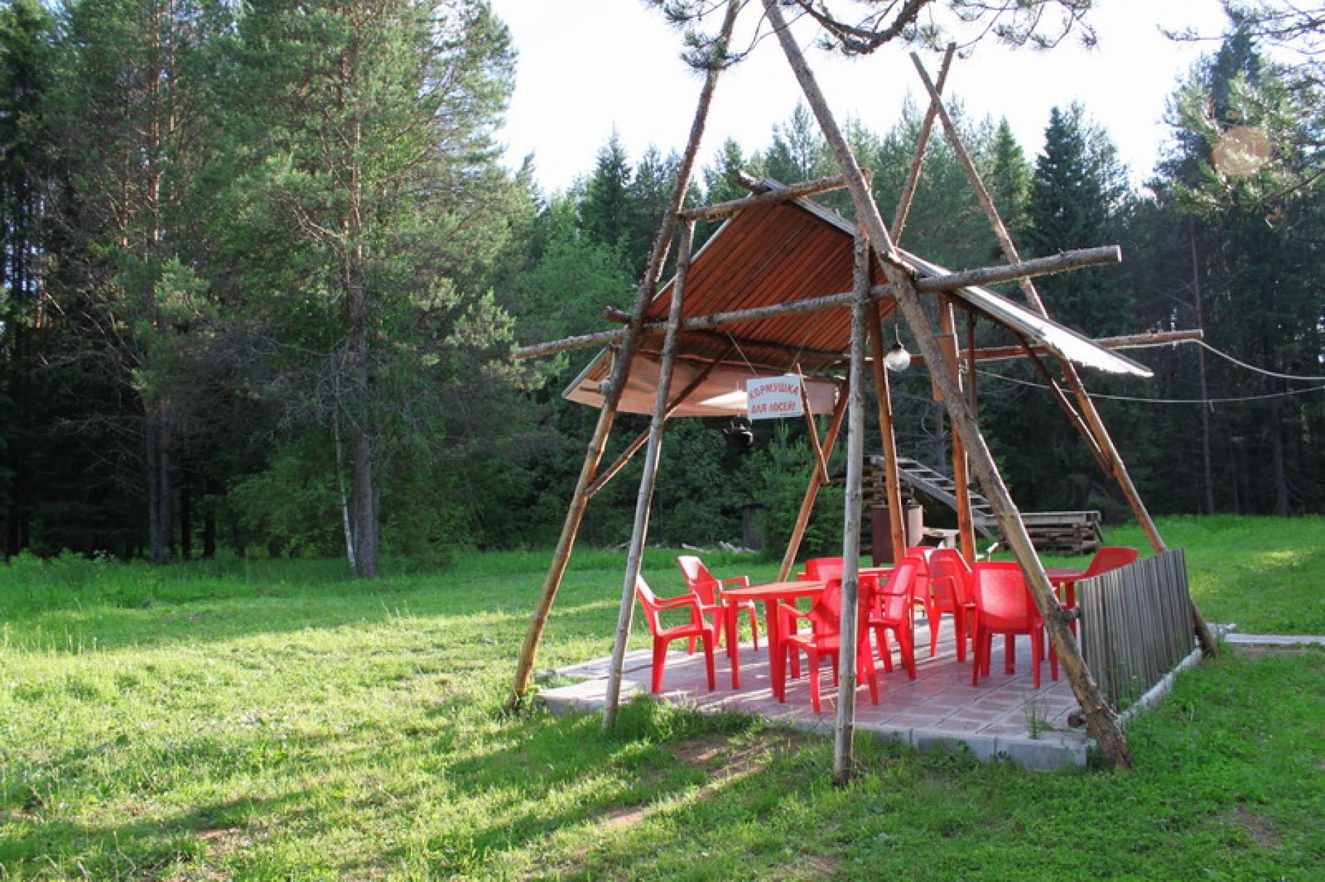 База отдыха «Сосновые шишки» Кировская область, фото 2
