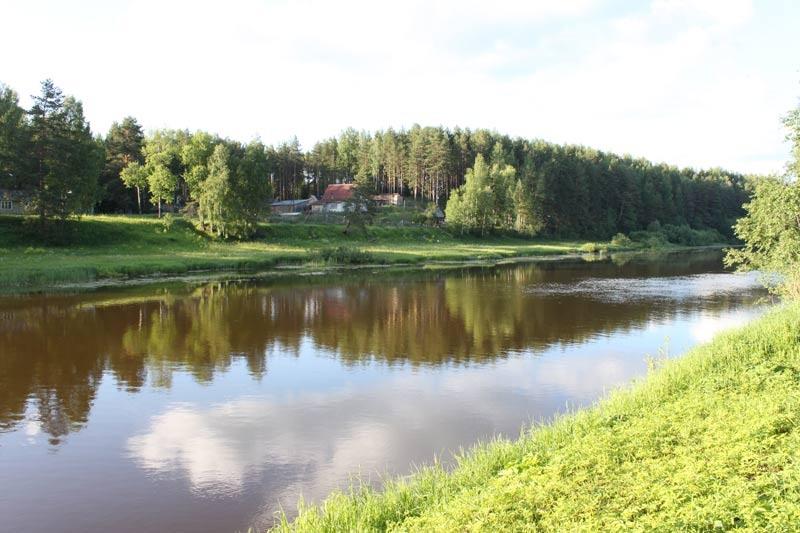 База отдыха «Сосновые шишки» Кировская область, фото 6