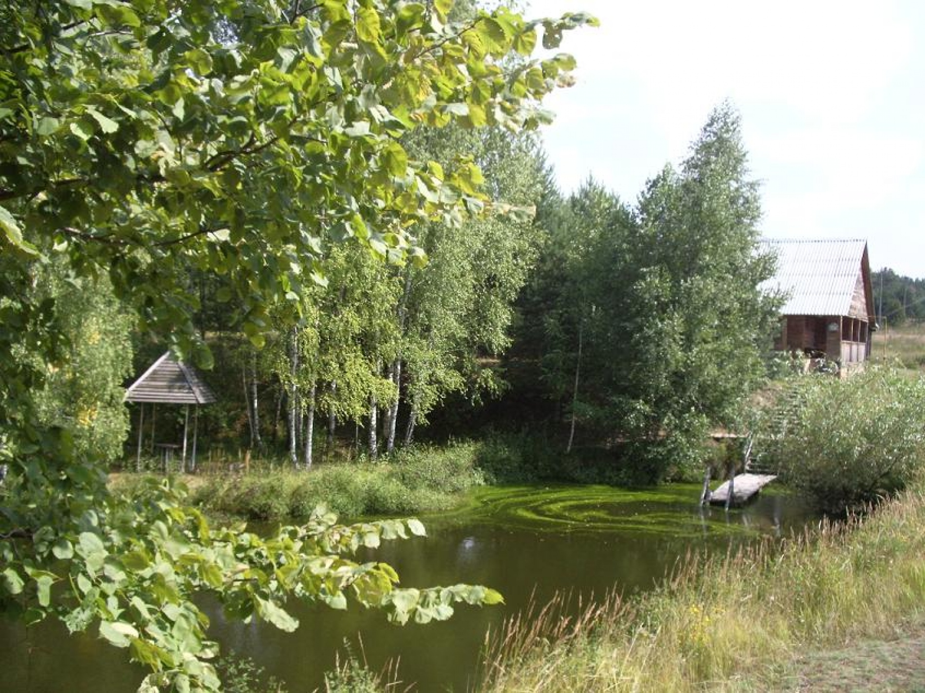 """База отдыха """"Сумбулово"""" Рязанская область, фото 6"""