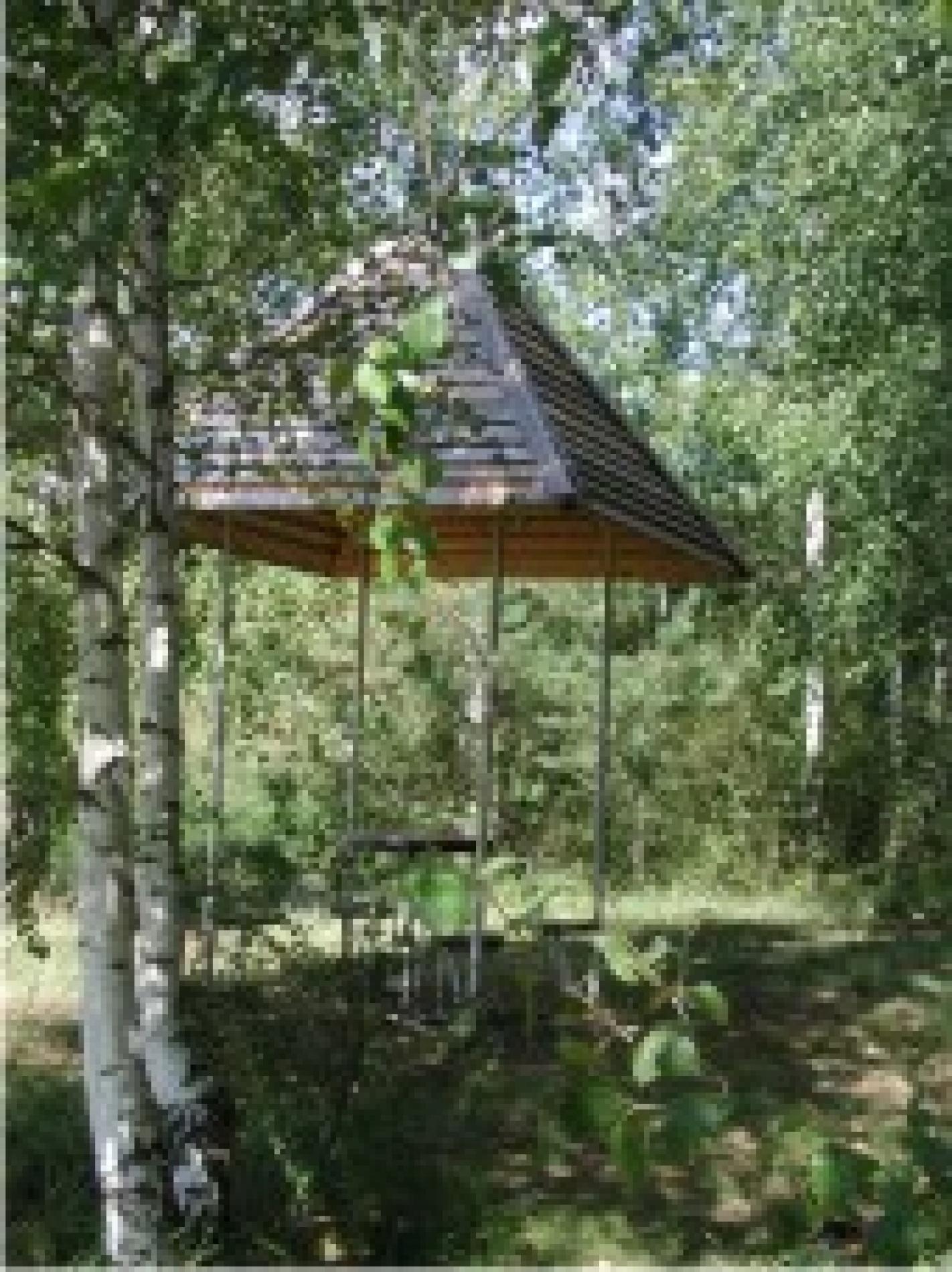 """База отдыха """"Сумбулово"""" Рязанская область, фото 26"""