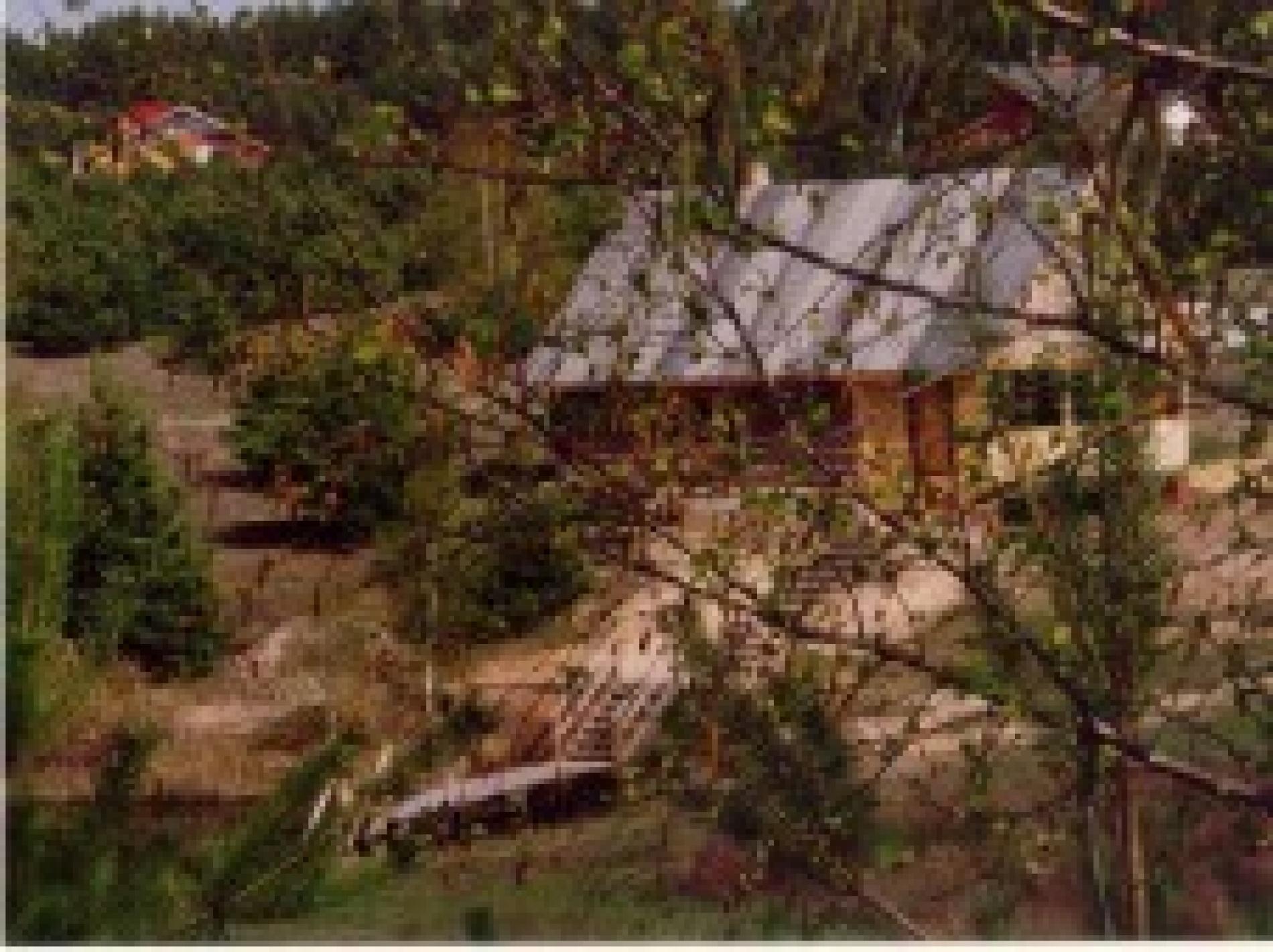 """База отдыха """"Сумбулово"""" Рязанская область, фото 37"""