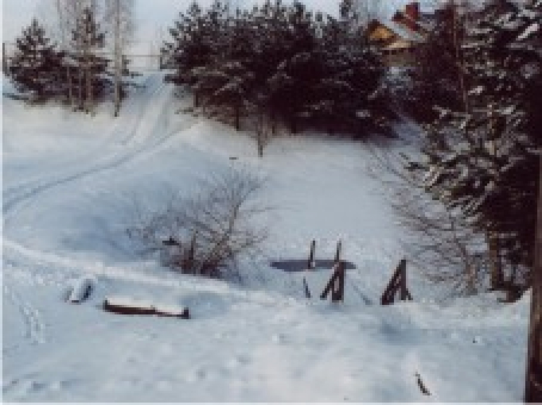 """База отдыха """"Сумбулово"""" Рязанская область, фото 42"""