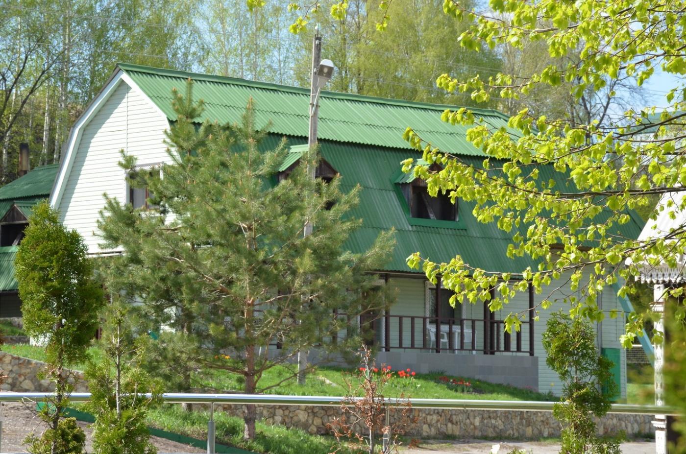 Загородный клуб «Волков» Пензенская область Номер «Зеленый лес» (люкс), фото 1