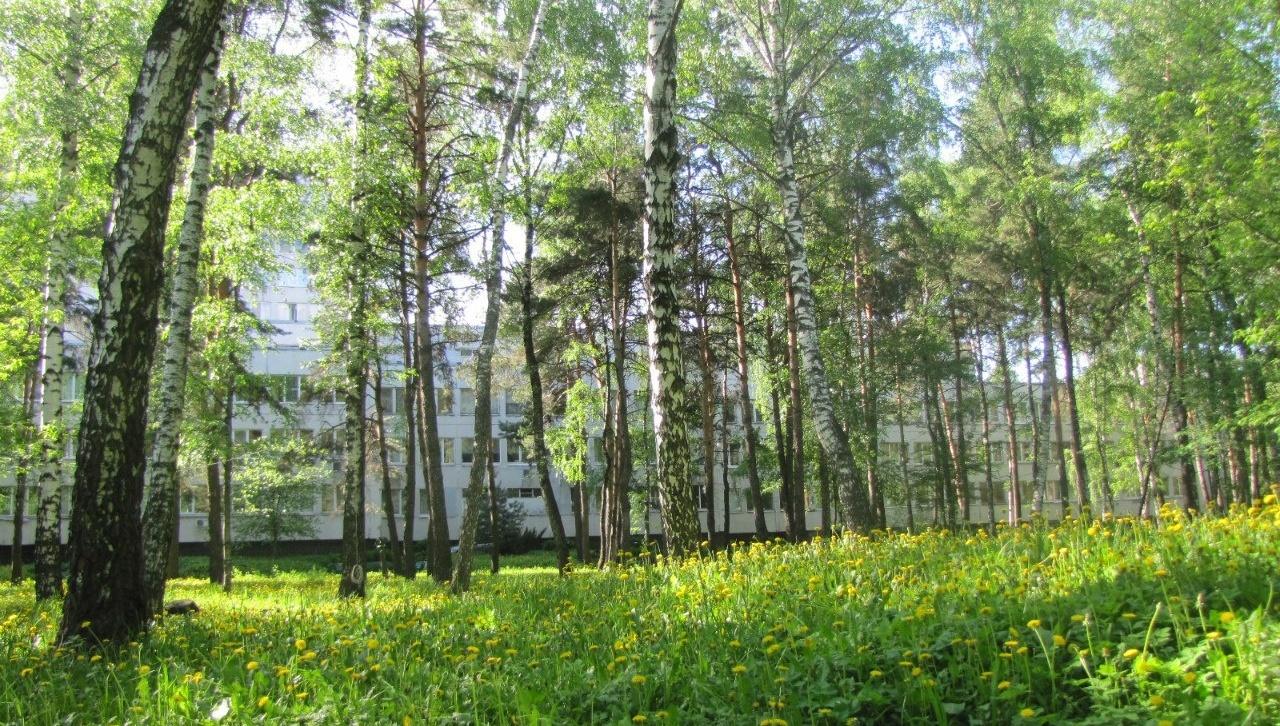 Оздоровительный комплекс «Devon Resort & Spa» Московская область, фото 3