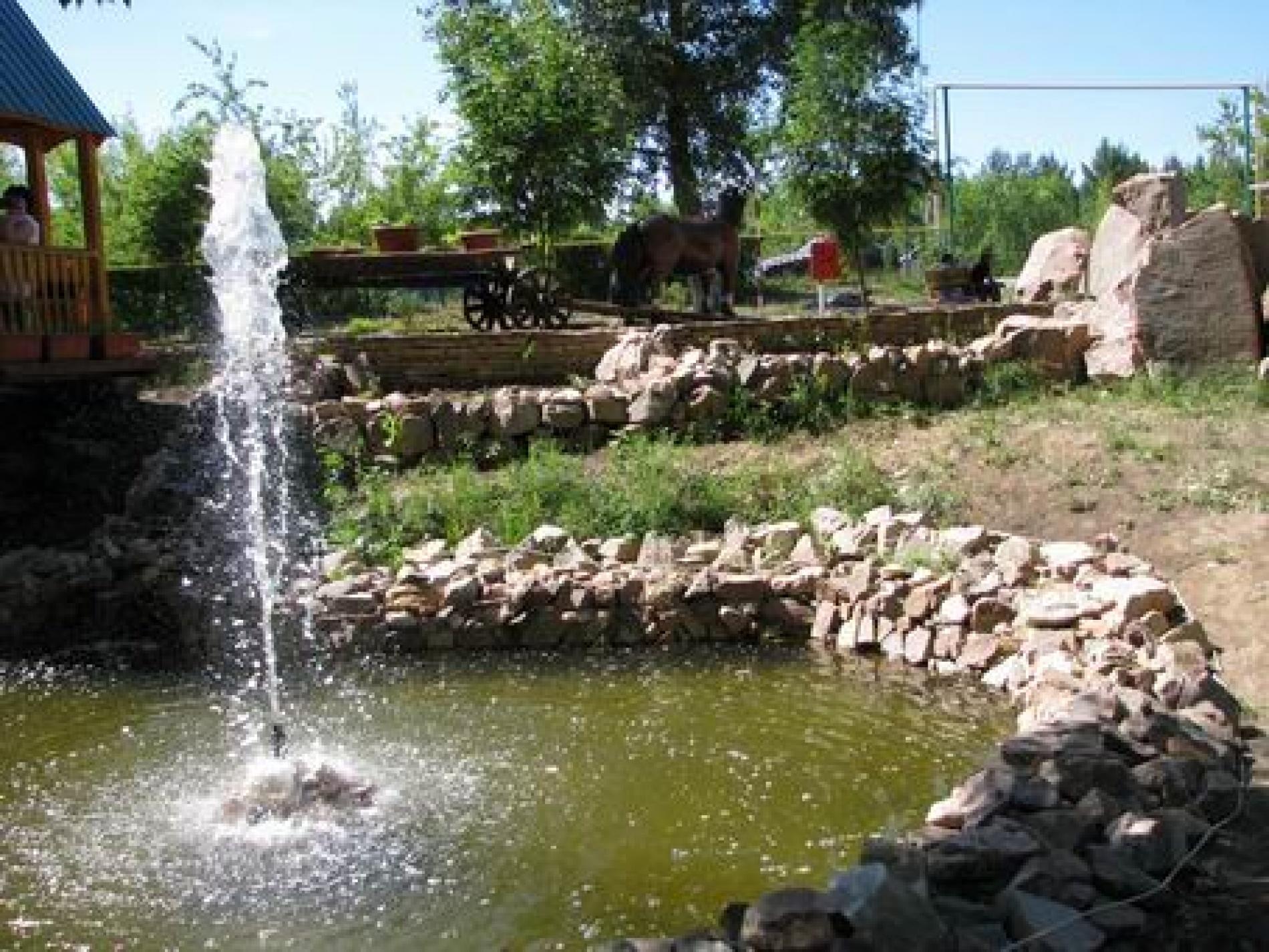 """База отдыха """"Экстрим-Парк"""" Оренбургская область, фото 13"""