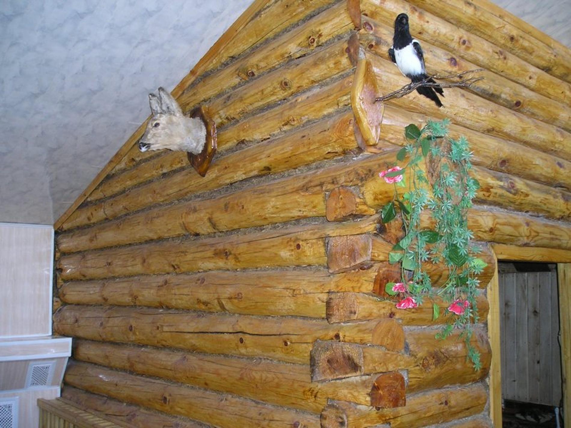"""База отдыха """"Черный Яр"""" Оренбургская область, фото 14"""