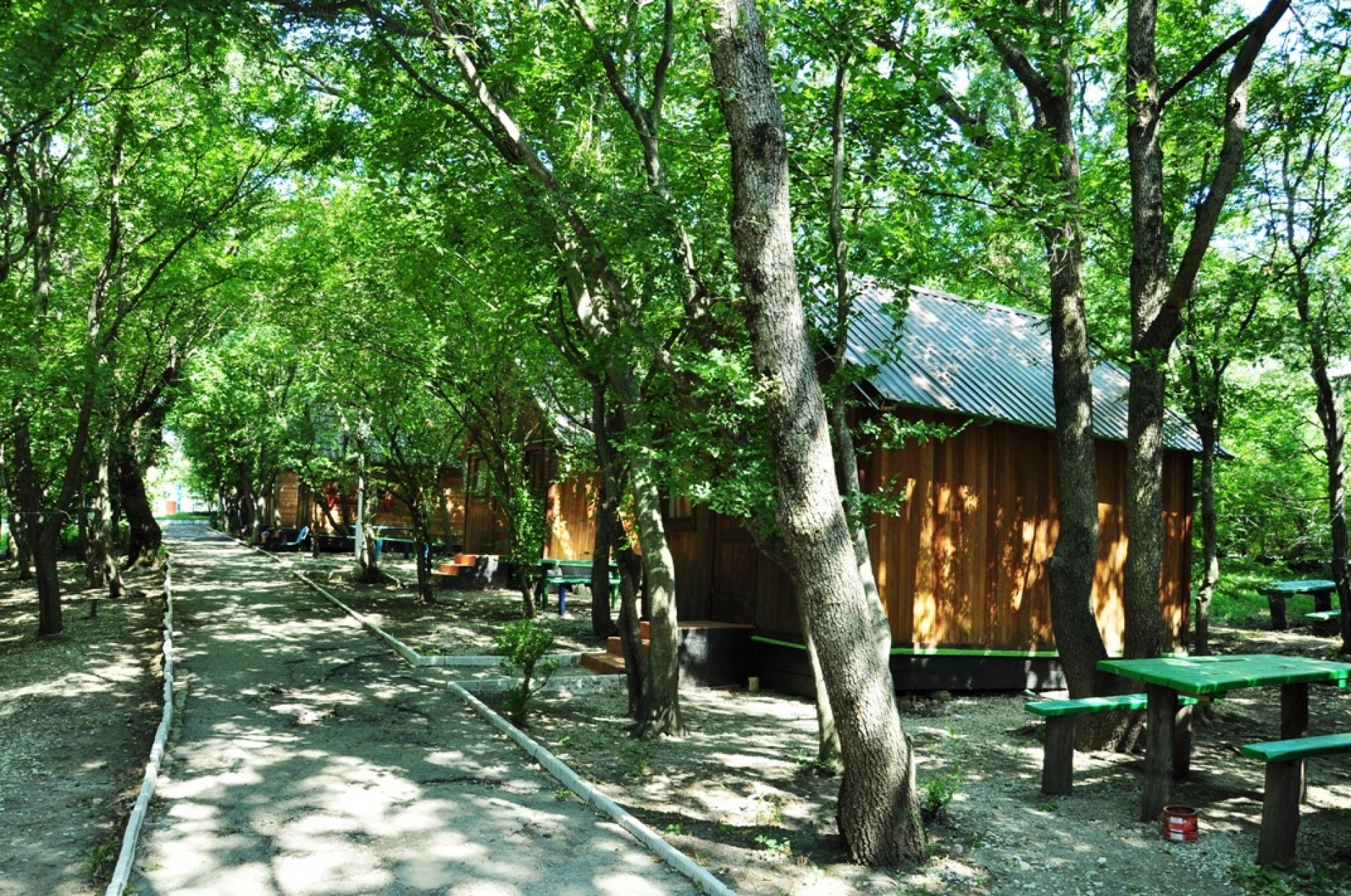 """База отдыха """"Лесник"""" Краснодарский край, фото 9"""