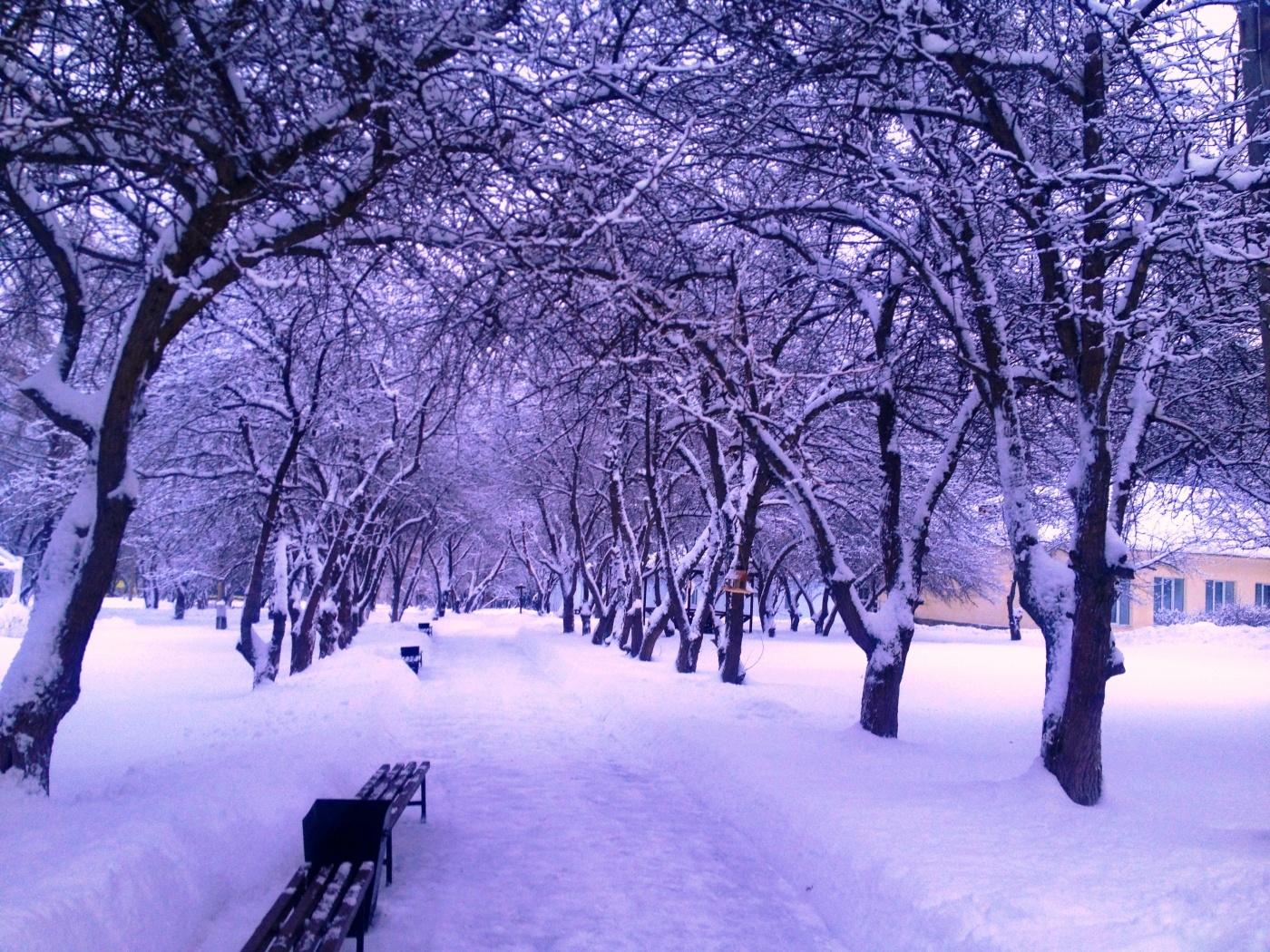 База отдыха «Солнечный остров» Свердловская область, фото 12