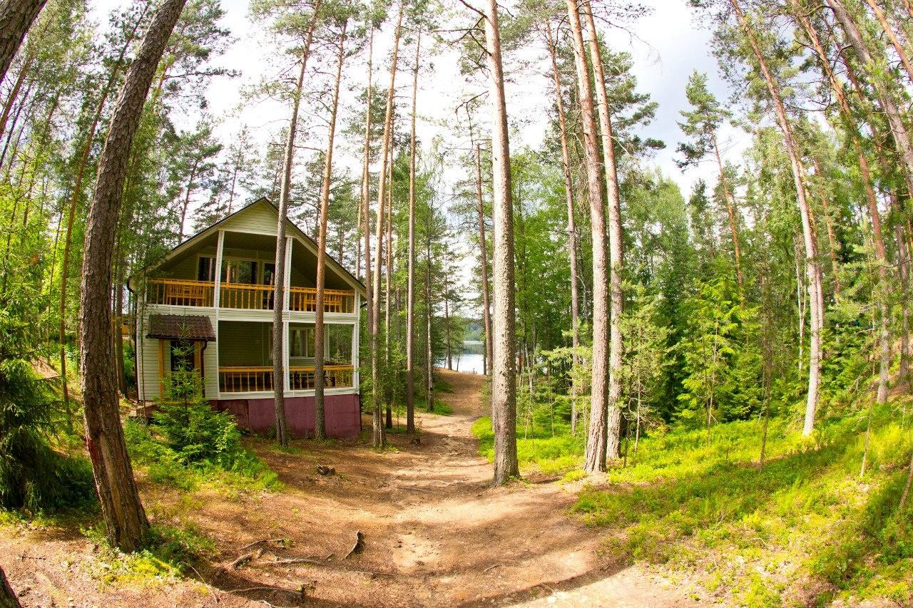 База отдыха «Журавушка» Ленинградская область, фото 6
