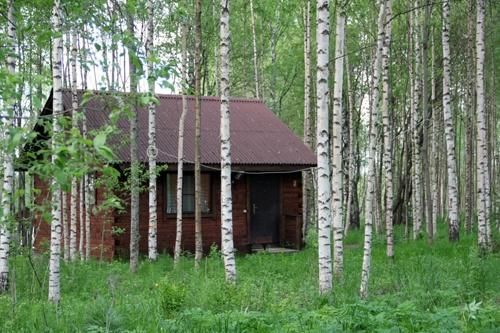 """База отдыха """"Великое озеро"""" Новгородская область, фото 4"""