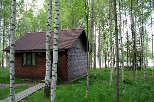 """База отдыха """"Великое озеро"""" Новгородская область, фото 3"""