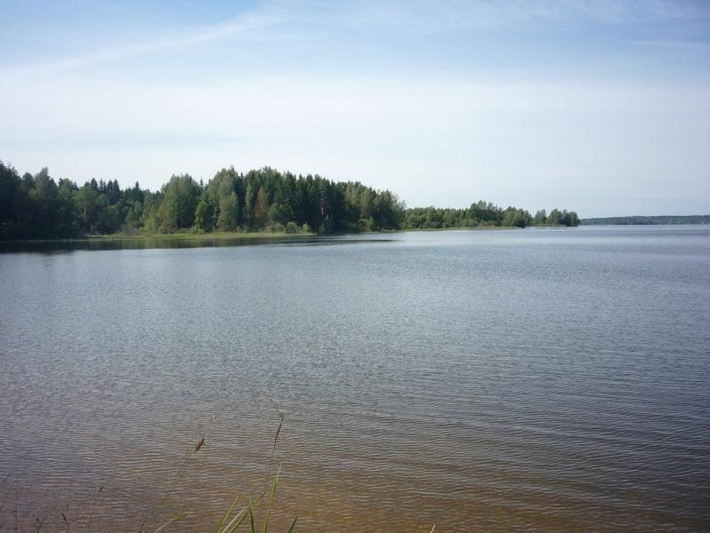 """База отдыха """"Великое озеро"""" Новгородская область, фото 14"""