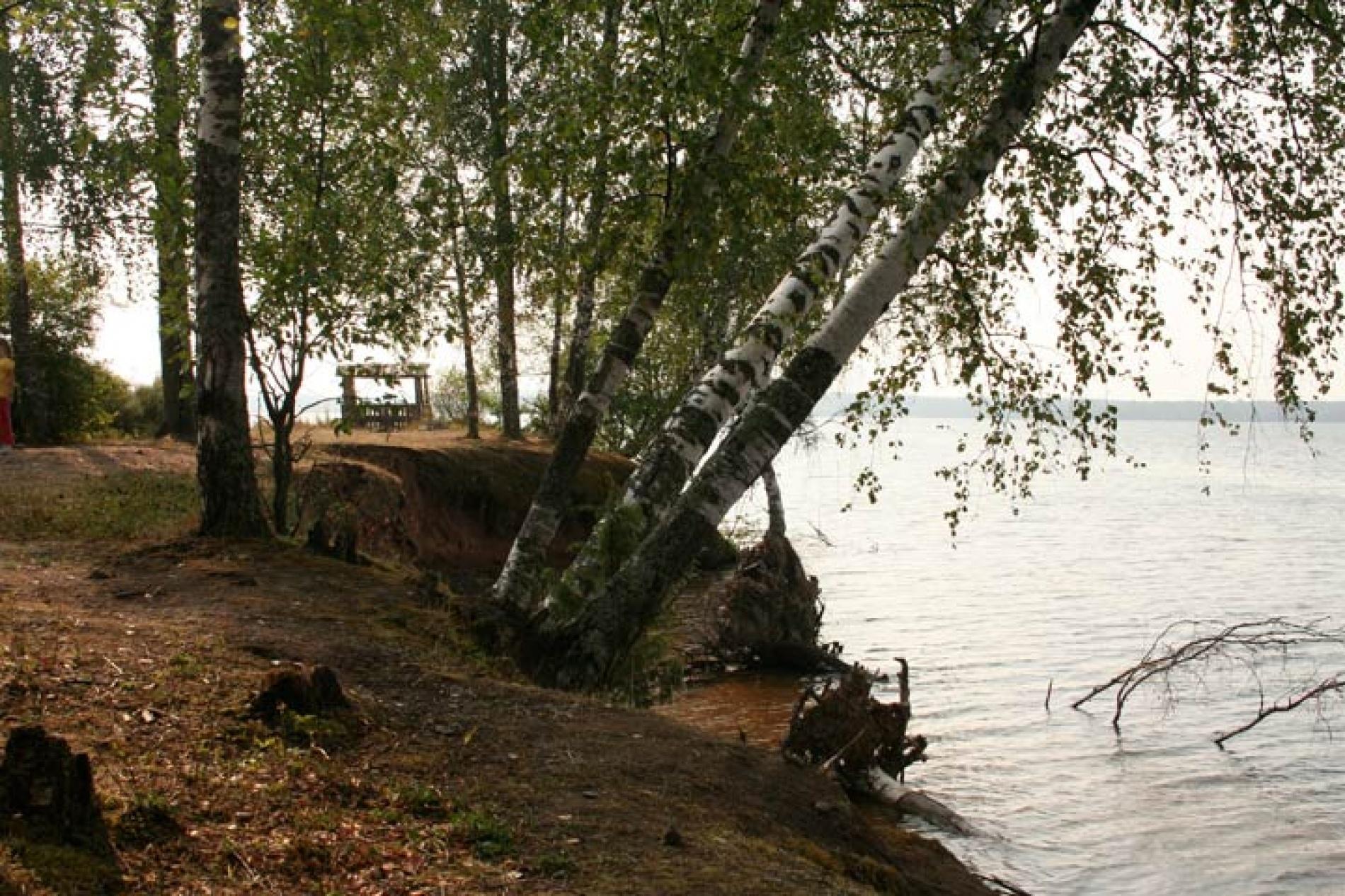 """База отдыха """"Великое озеро"""" Новгородская область, фото 12"""