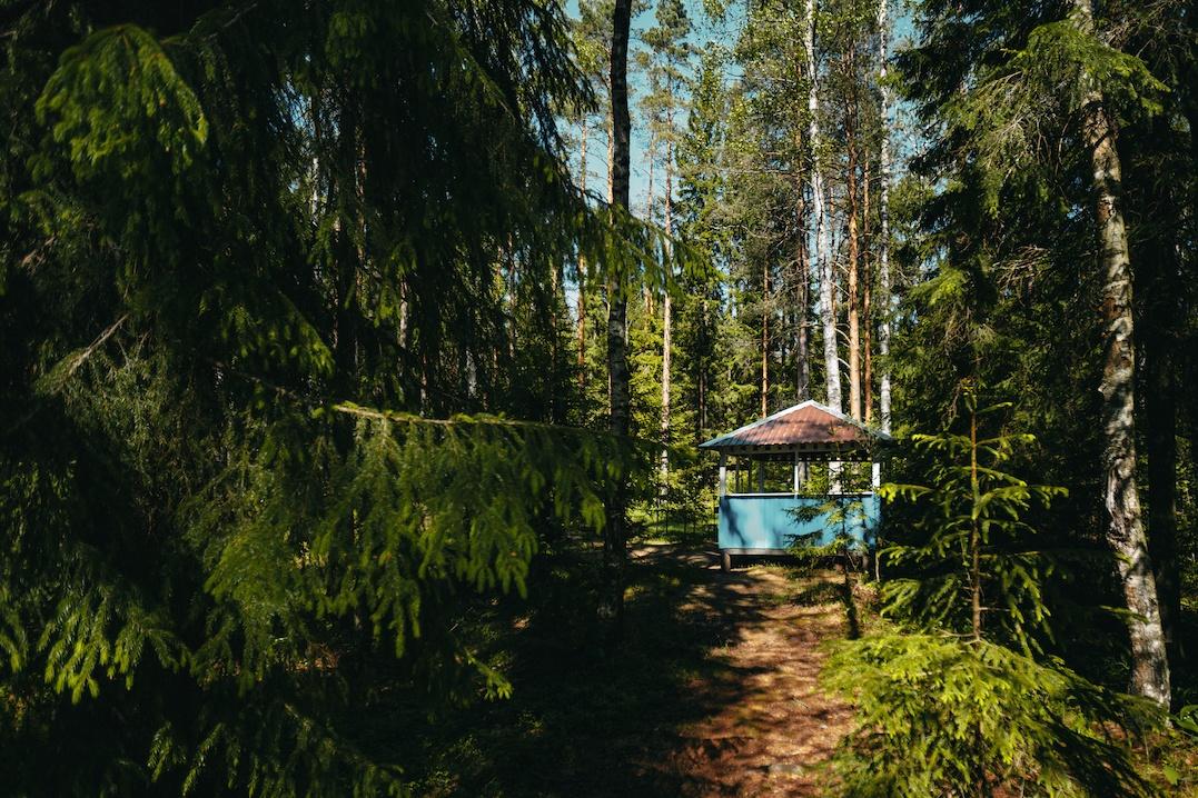 База отдыха «Пасторское озеро» Ленинградская область, фото 7