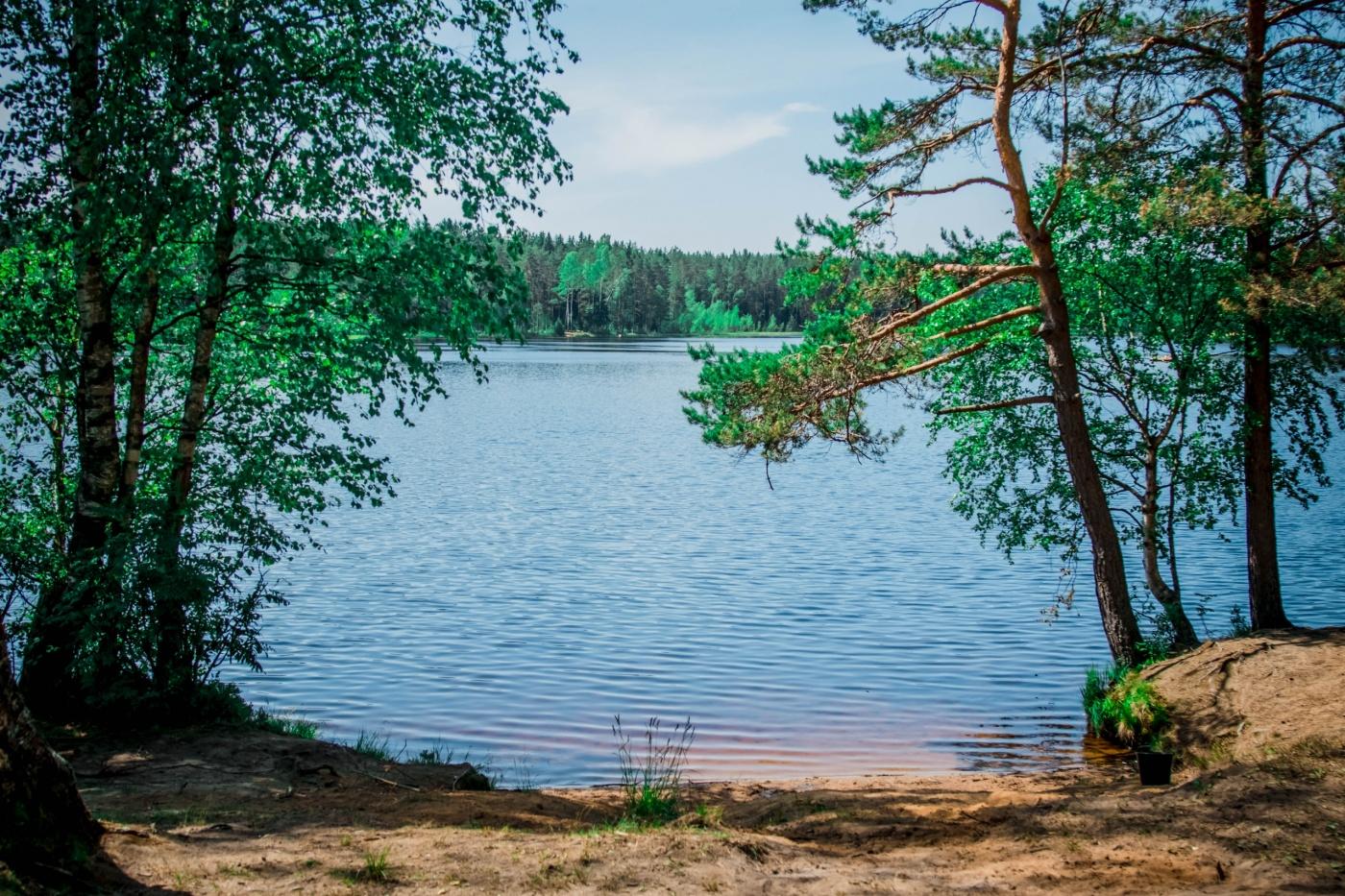 База отдыха «Пасторское озеро» Ленинградская область, фото 10