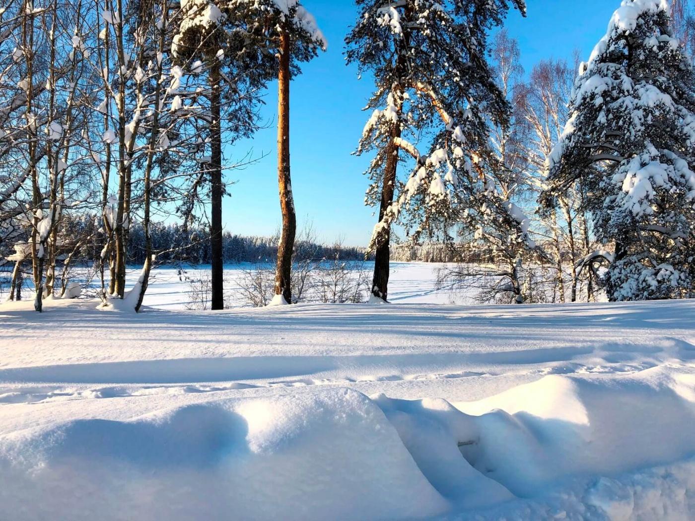 База отдыха «Пасторское озеро» Ленинградская область, фото 16