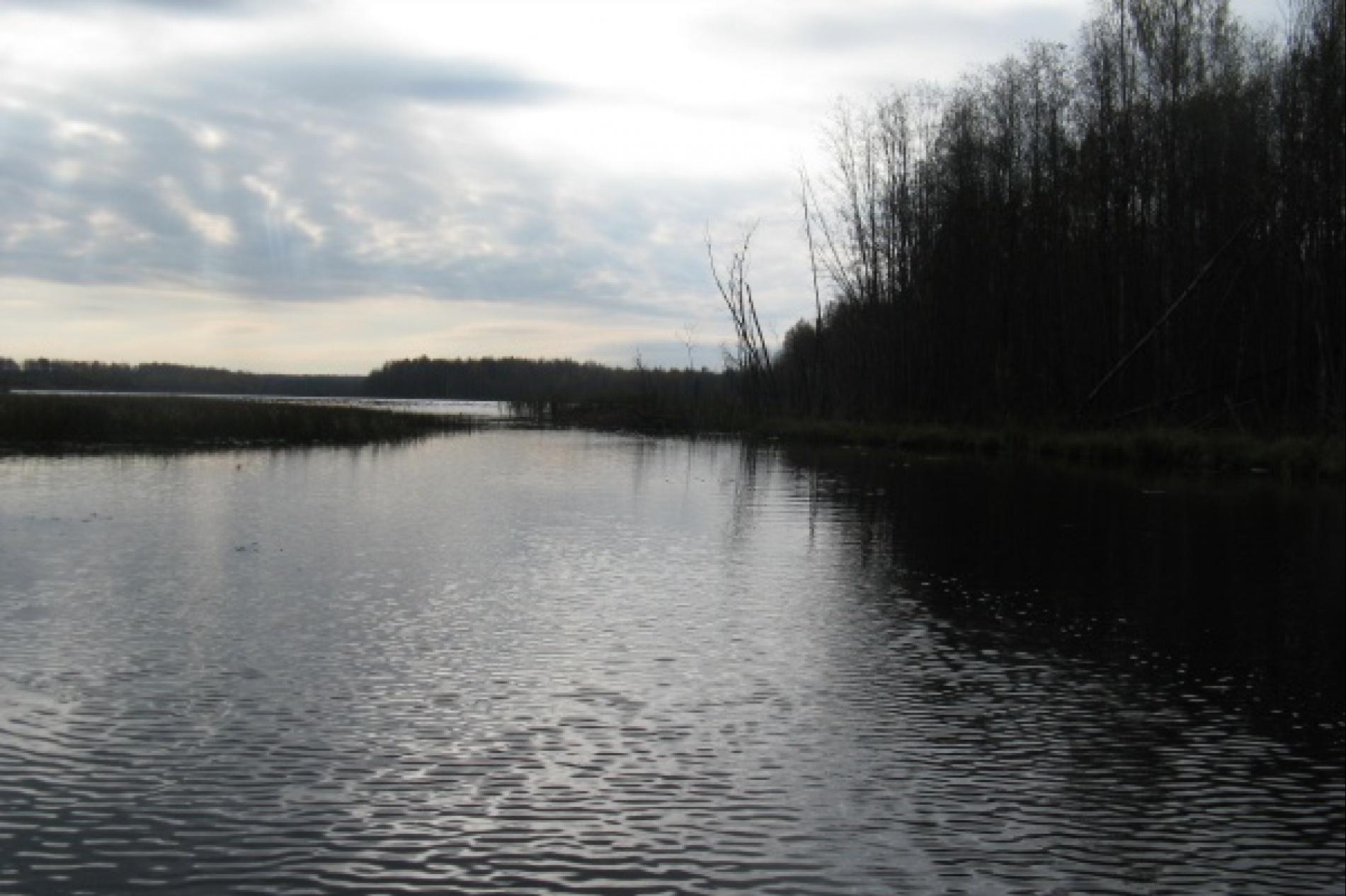 Охотничье хозяйство «Раздобарино» Смоленская область, фото 7