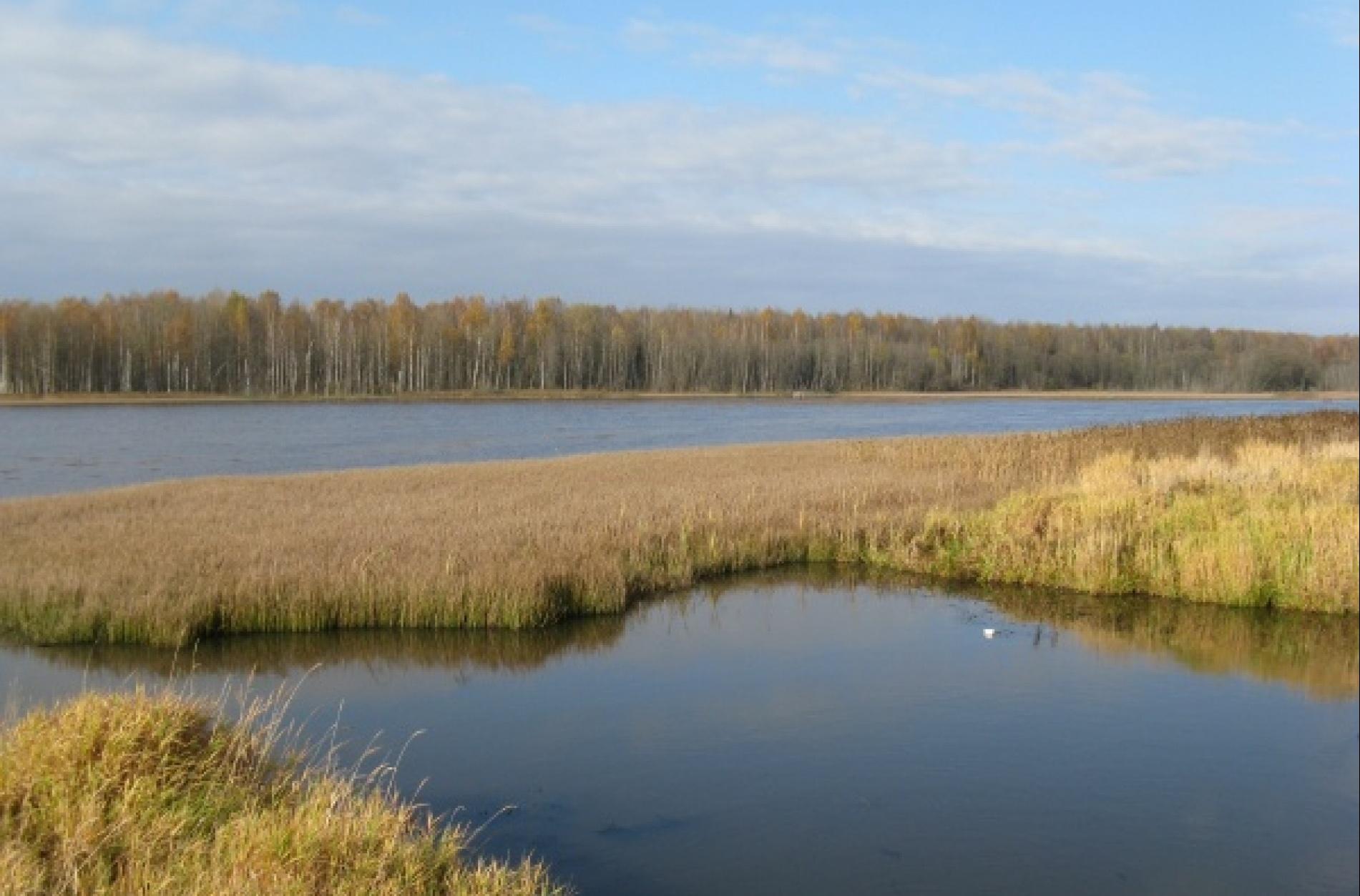 Охотничье хозяйство «Раздобарино» Смоленская область, фото 5