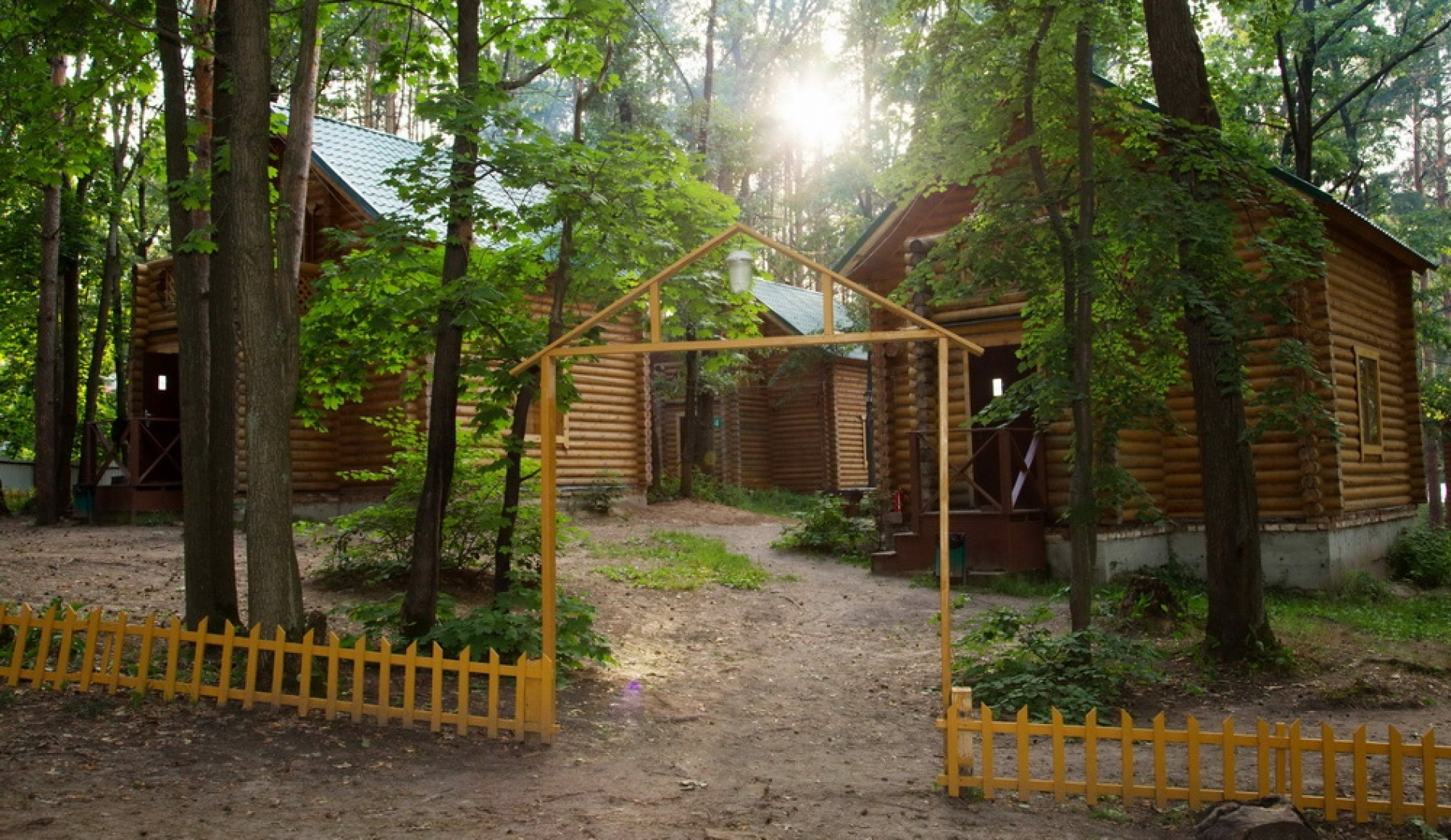 База отдыха лесу фото