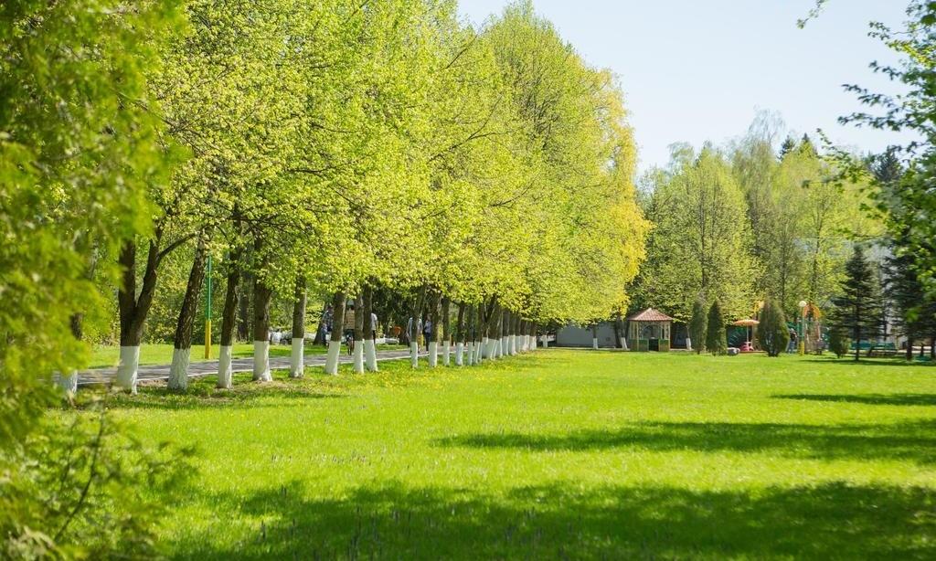 Оздоровительный комплекс «Десна» Московская область, фото 9