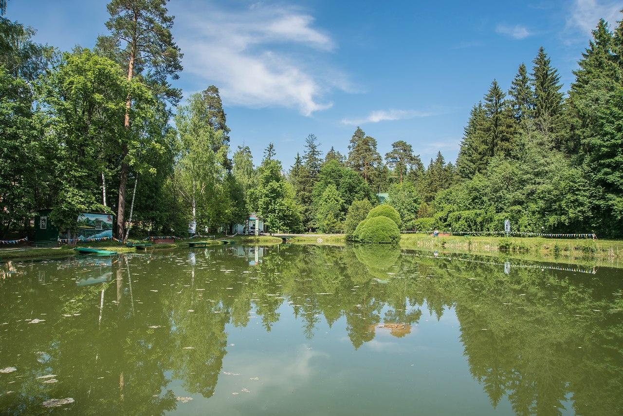 Центр отдыха «Голицыно» Московская область, фото 10