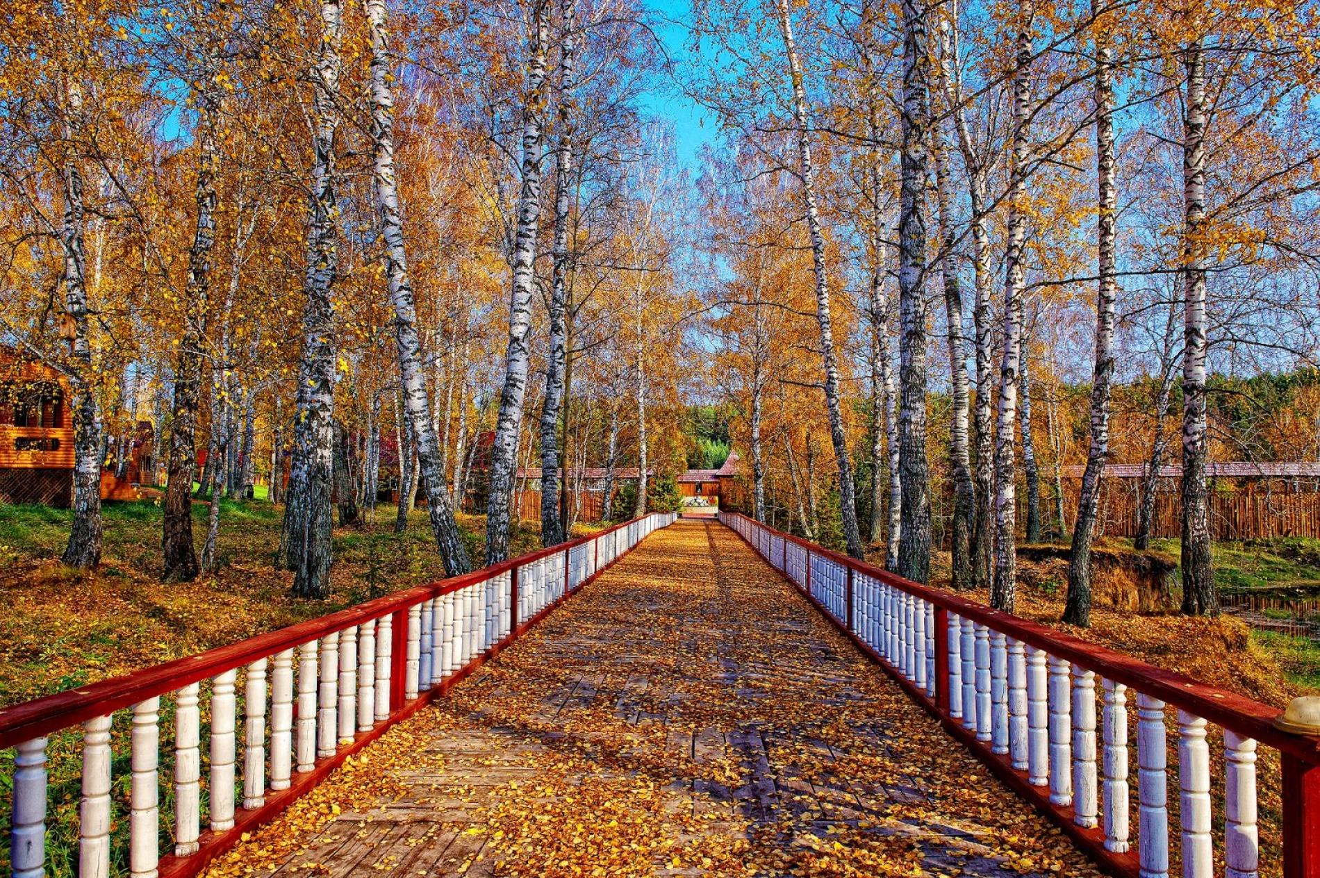 """База отдыха """"Акватория"""" Тюменская область, фото 25"""