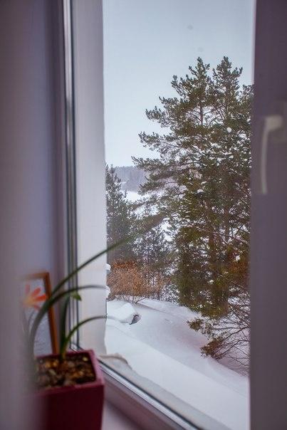 Загородный гостиничный комплекс «Горлица» Удмуртская Республика Номер 1 «Стандарт семейный», фото 2