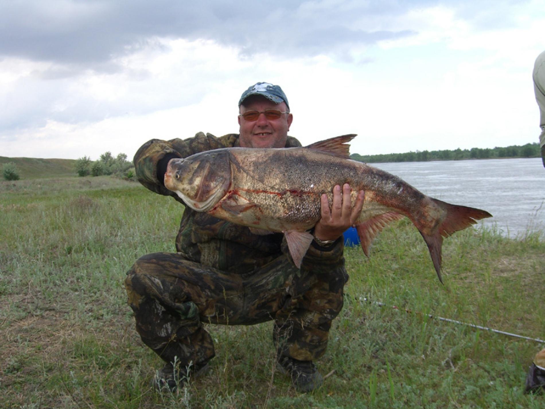 """Рыболовно-охотничья база """"Мария"""" Республика Калмыкия, фото 12"""