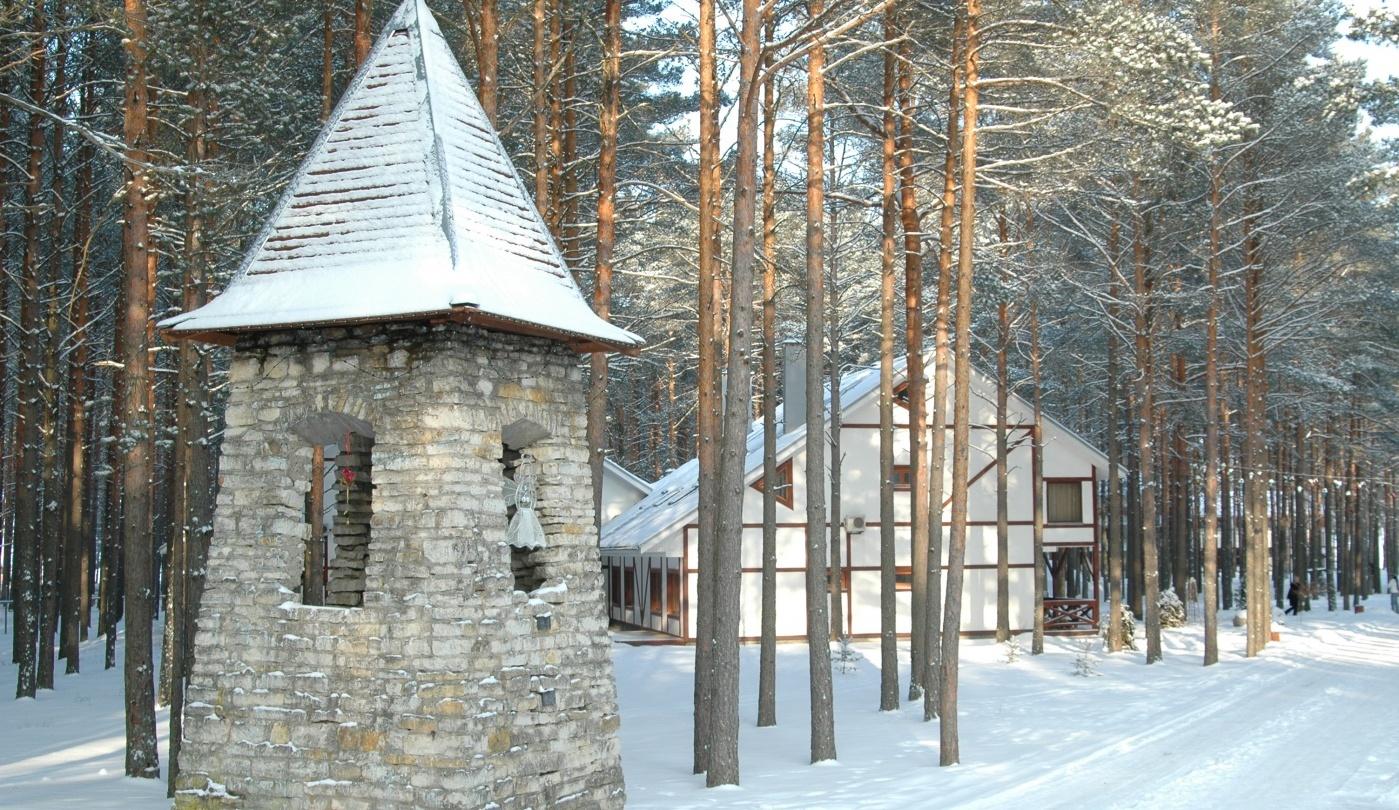 Загородный отель «Плесков» Псковская область, фото 1