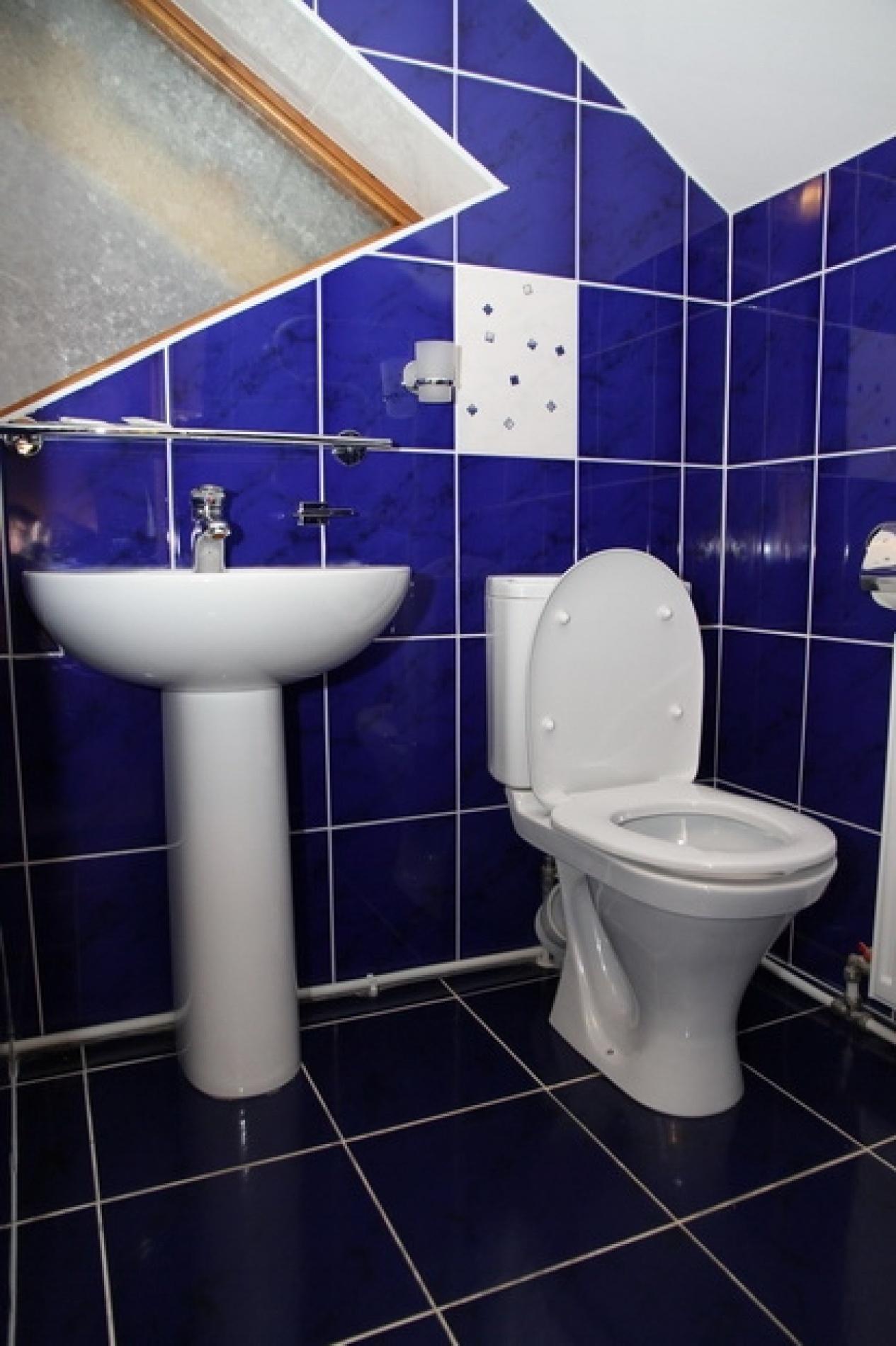 Загородный отель «Плесков» Псковская область Стандарт № 2, фото 3