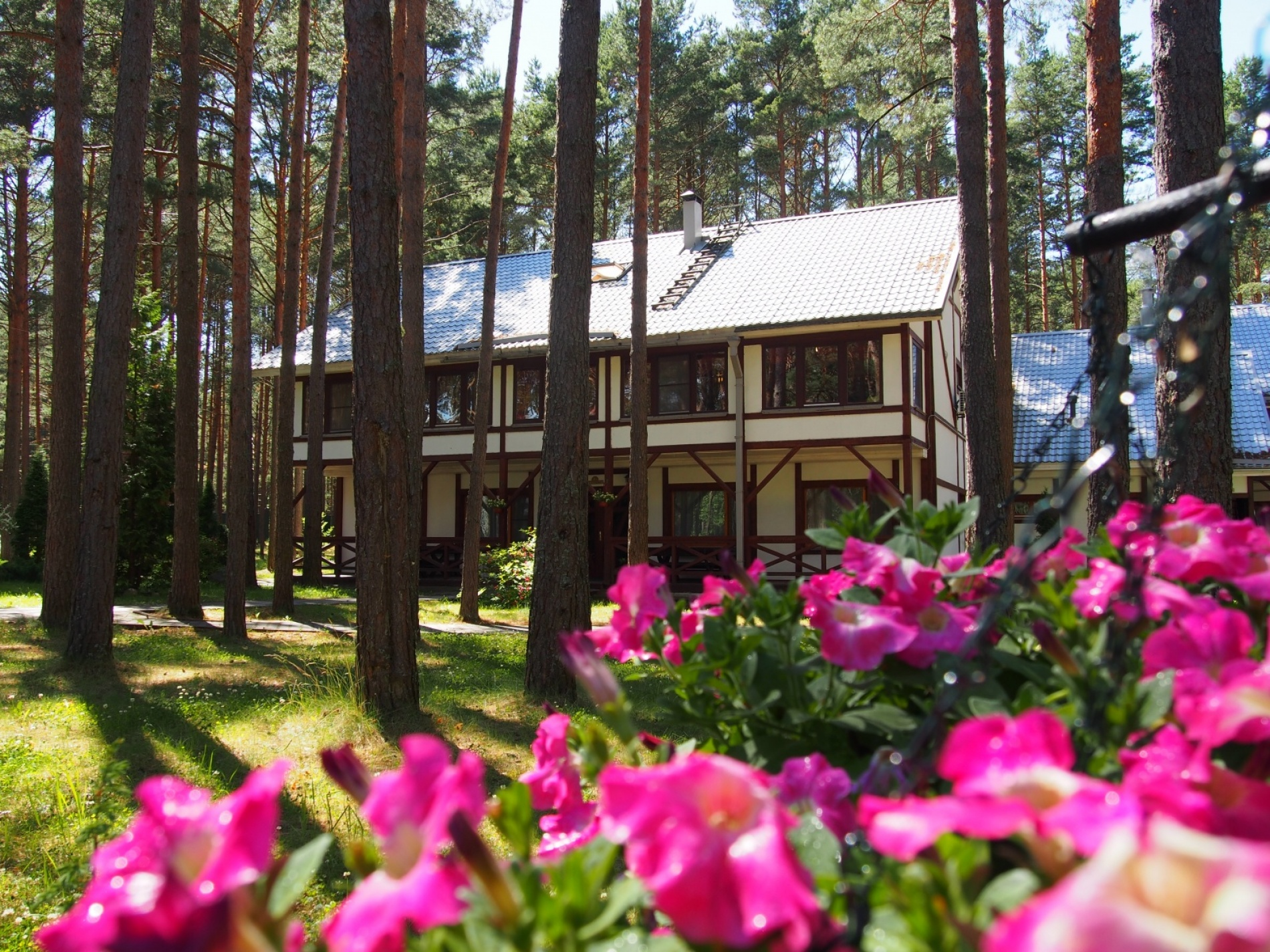 Загородный отель «Плесков» Псковская область, фото 7