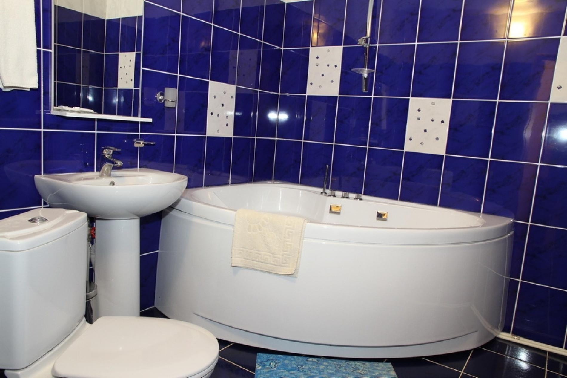 Загородный отель «Плесков» Псковская область Апартаменты № 2, фото 4