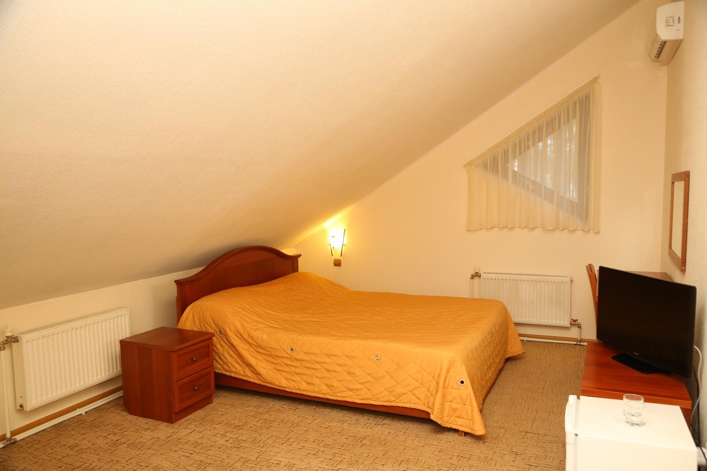 Загородный отель «Плесков» Псковская область Стандарт № 2, фото 2