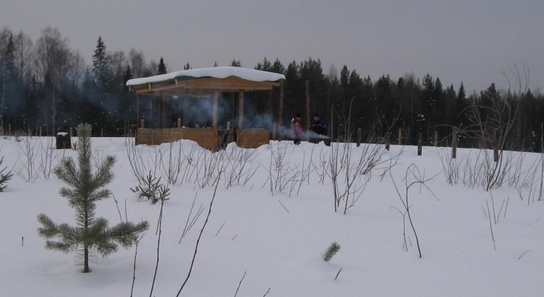 """База отдыха """"Конный дворик"""" Республика Коми, фото 11"""