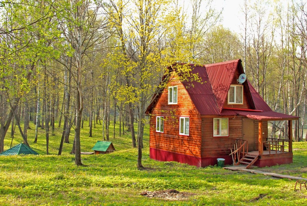 База отдыха «Налитово» Ульяновская область, фото 6