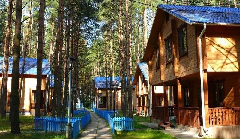 База отдыха «Чайка» Нижегородская область, фото 1