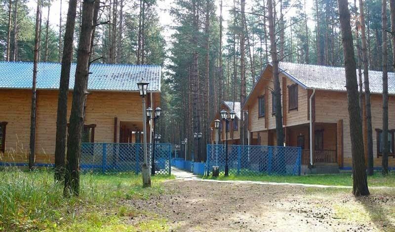 База отдыха «Чайка» Нижегородская область, фото 4