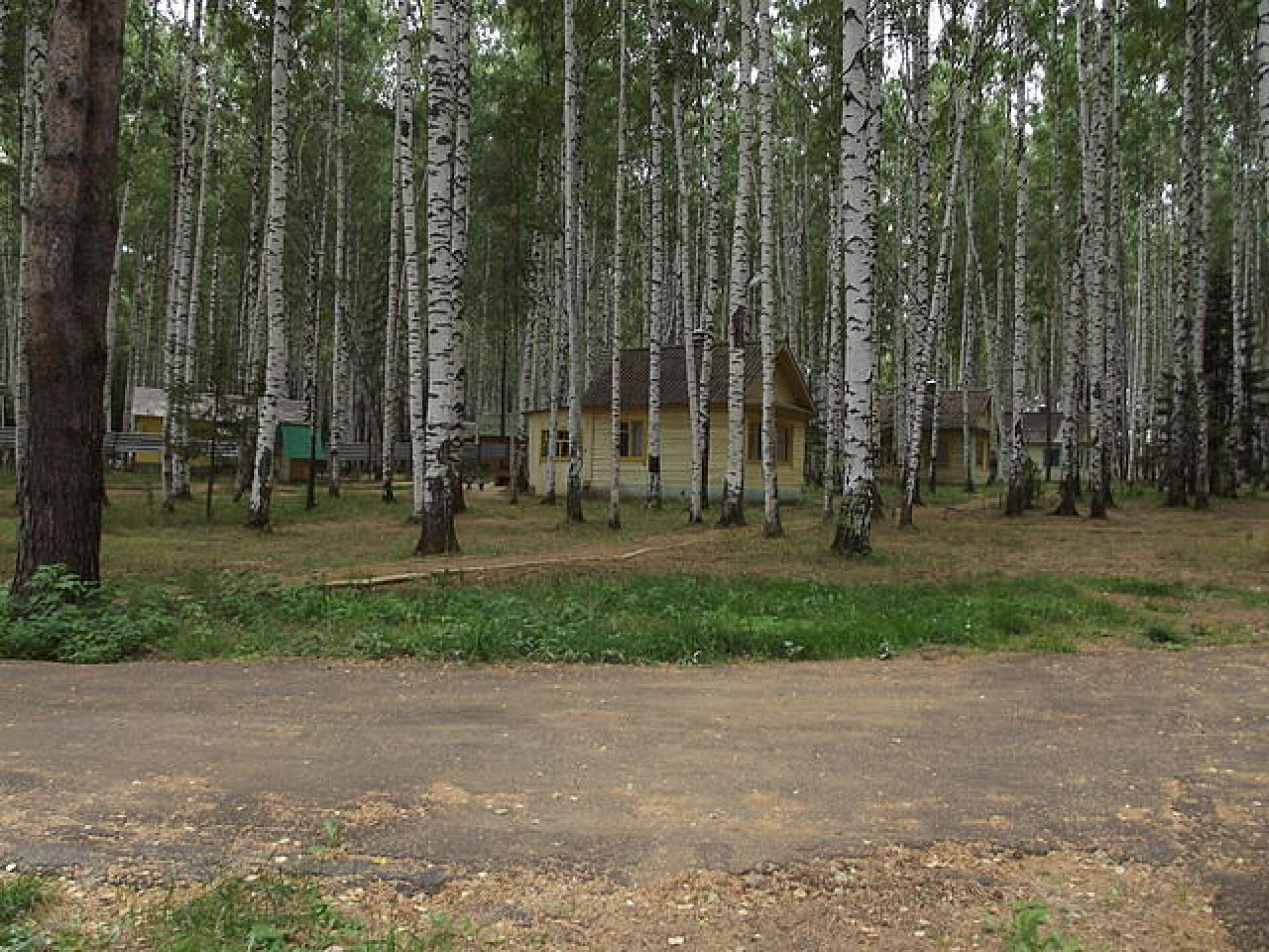 """База отдыха """"Березовая"""" Удмуртская Республика, фото 16"""