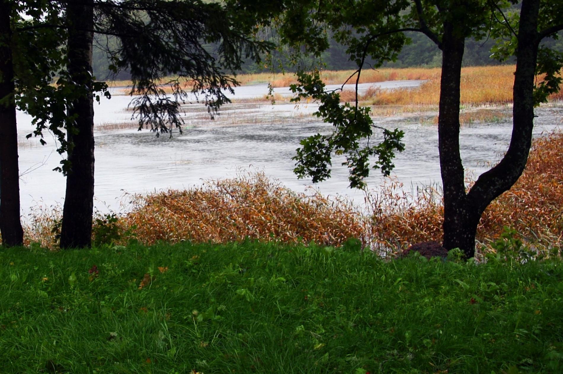 База отдыха «Соколинское» Ленинградская область, фото 6