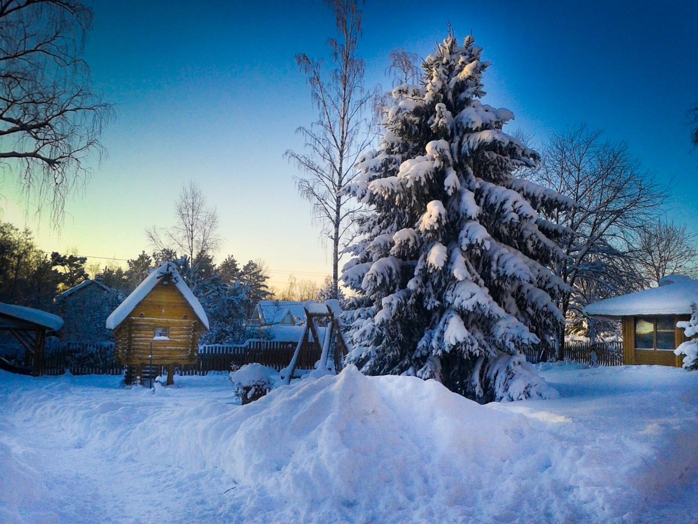 База отдыха «Беличье» Ленинградская область Групповой заезд, фото 2