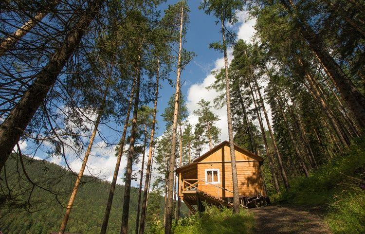 База отдыха «Беретская поляна» Красноярский край, фото 7