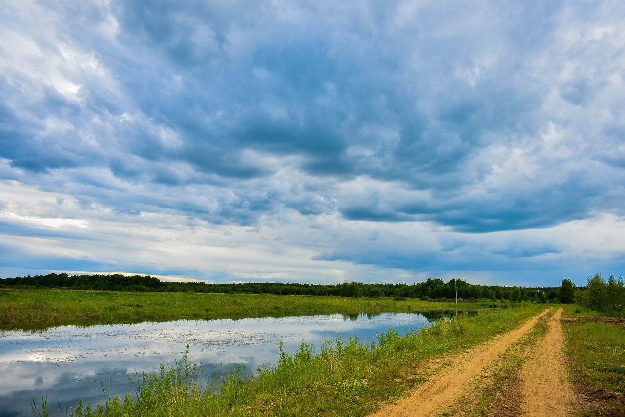 База отдыха «Некрасовская дача» Ярославская область, фото 10