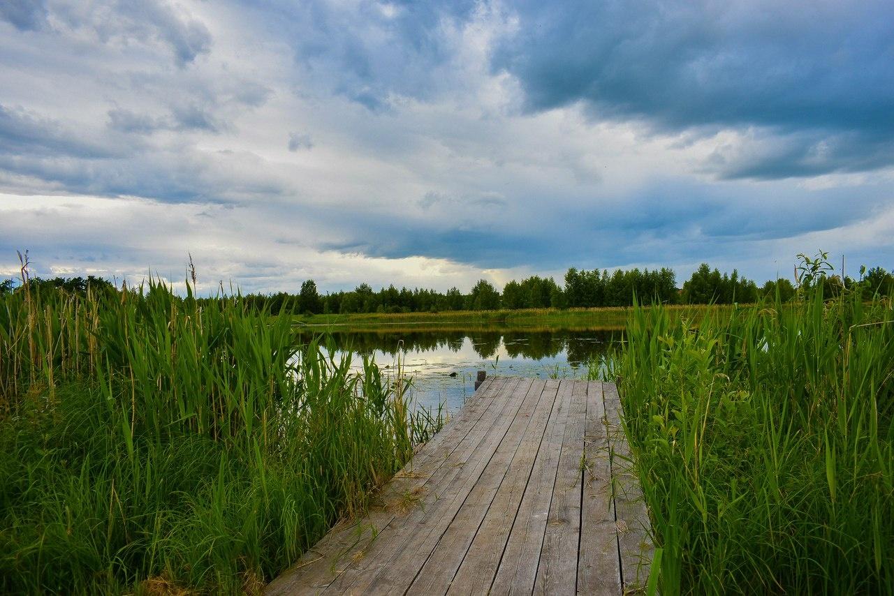 База отдыха «Некрасовская дача» Ярославская область, фото 11