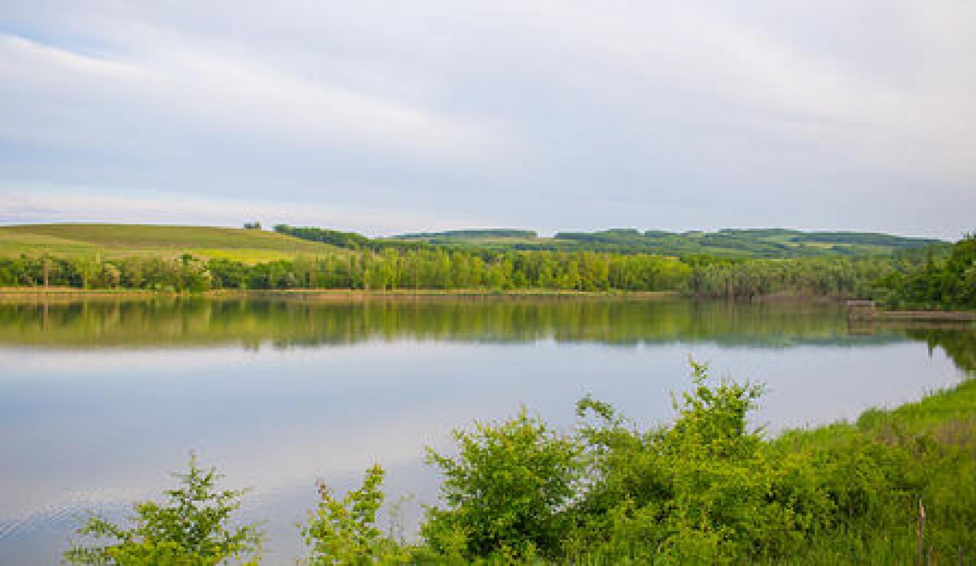 """База отдыха """"Семеновский пруд"""" Краснодарский край, фото 1"""